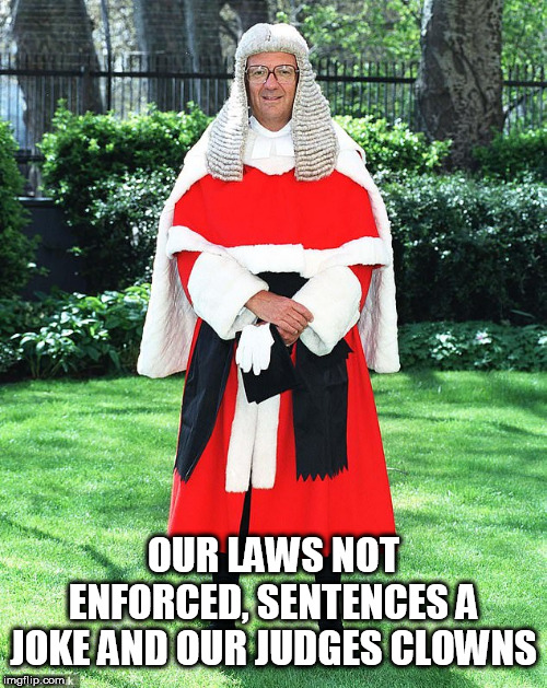 Fools |  OUR LAWS NOT ENFORCED, SENTENCES A JOKE AND OUR JUDGES CLOWNS | image tagged in fools | made w/ Imgflip meme maker