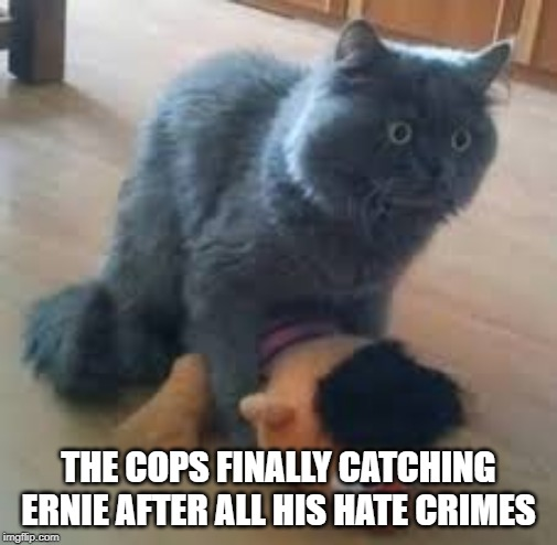 We gottem | THE COPS FINALLY CATCHING ERNIE AFTER ALL HIS HATE CRIMES | image tagged in ernie prepares to commit a hate crime,memes,random | made w/ Imgflip meme maker