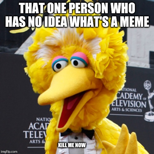 Big Bird | THAT ONE PERSON WHO HAS NO IDEA WHAT'S A MEME KILL ME NOW | image tagged in memes,big bird | made w/ Imgflip meme maker