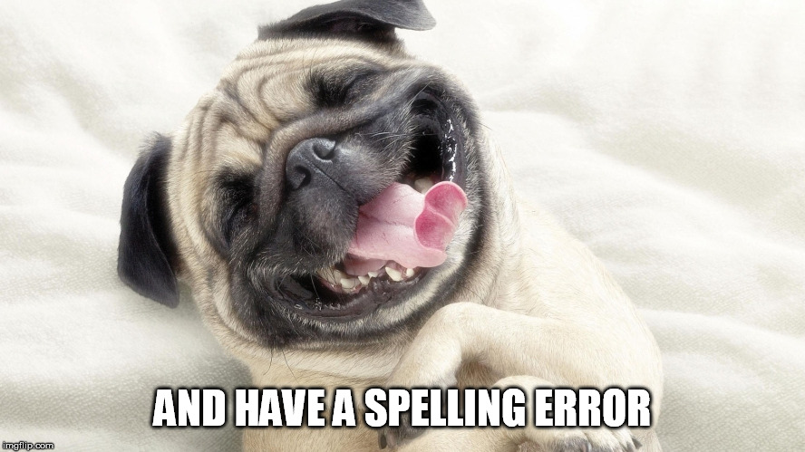 laughing dog | AND HAVE A SPELLING ERROR | image tagged in laughing dog | made w/ Imgflip meme maker