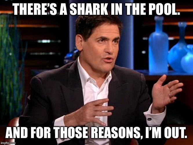 Shark Tank Memes Gifs Imgflip