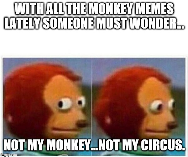 Not My Monkey.... | WITH ALL THE MONKEY MEMES LATELY SOMEONE MUST WONDER... NOT MY MONKEY...NOT MY CIRCUS. | image tagged in monkey puppet,circus,monkey | made w/ Imgflip meme maker