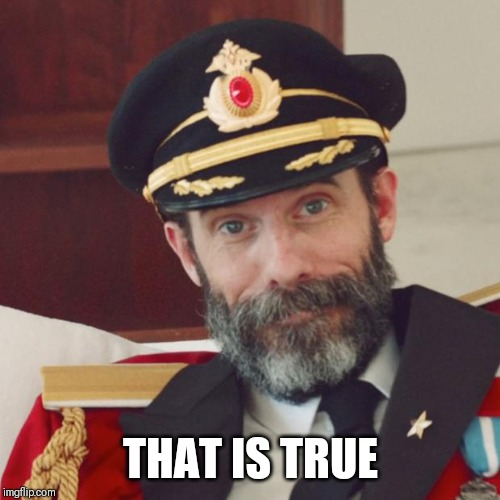 Captain Obvious | THAT IS TRUE | image tagged in captain obvious | made w/ Imgflip meme maker