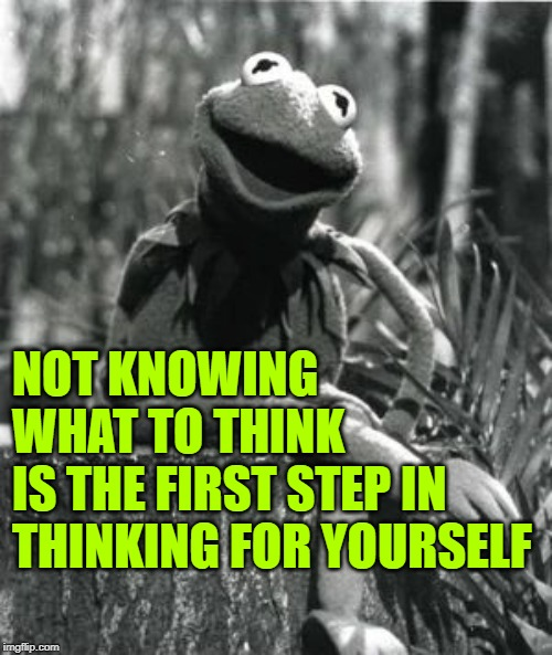 What Would Kermit Think? | NOT KNOWING WHAT TO THINK IS THE FIRST STEP IN THINKING FOR YOURSELF | image tagged in so true memes,kermit the frog,words of wisdom,role model,think for yourself,thinking meme | made w/ Imgflip meme maker