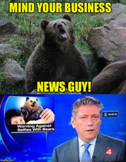For people who barely have a brain. | MIND YOUR BUSINESS NEWS GUY! | image tagged in sarcastic bear,news,selfies,memes,funny | made w/ Imgflip meme maker
