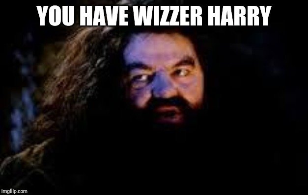 your a wizard harry | YOU HAVE WIZZER HARRY | image tagged in your a wizard harry | made w/ Imgflip meme maker