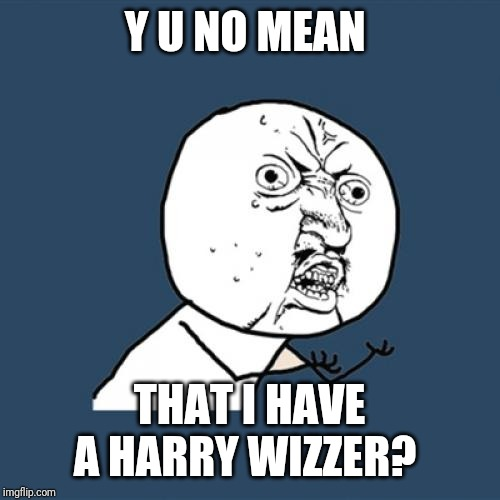 Y U No Meme | Y U NO MEAN THAT I HAVE A HARRY WIZZER? | image tagged in memes,y u no | made w/ Imgflip meme maker