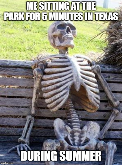 Summers In Texas | ME SITTING AT THE PARK FOR 5 MINUTES IN TEXAS DURING SUMMER | image tagged in memes,waiting skeleton | made w/ Imgflip meme maker
