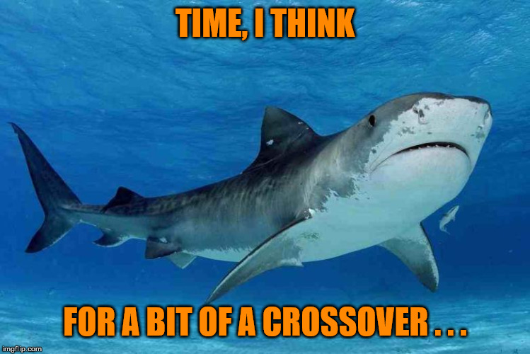 TIME, I THINK FOR A BIT OF A CROSSOVER . . . | made w/ Imgflip meme maker