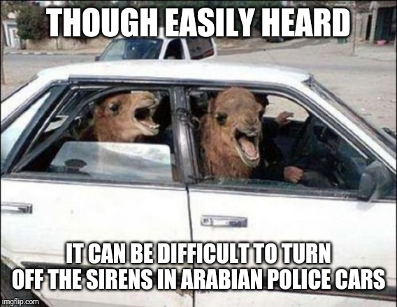Quit Hatin |  THOUGH EASILY HEARD; IT CAN BE DIFFICULT TO TURN OFF THE SIRENS IN ARABIAN POLICE CARS | image tagged in memes,quit hatin | made w/ Imgflip meme maker
