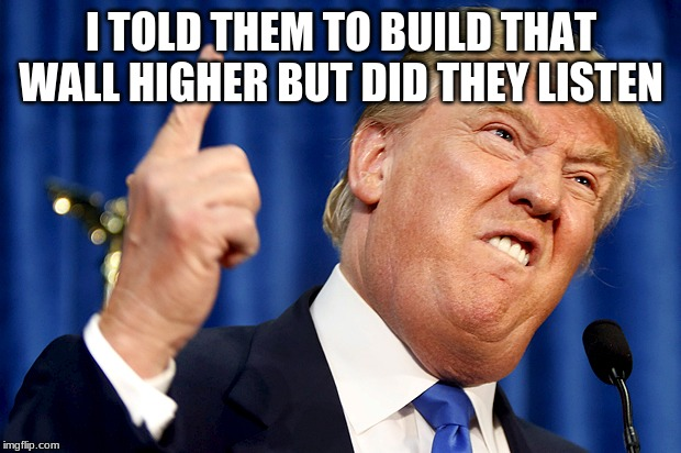 Donald Trump | I TOLD THEM TO BUILD THAT WALL HIGHER BUT DID THEY LISTEN | image tagged in donald trump | made w/ Imgflip meme maker