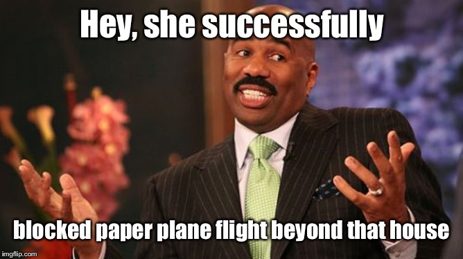 Steve Harvey Meme | Hey, she successfully blocked paper plane flight beyond that house | image tagged in memes,steve harvey | made w/ Imgflip meme maker