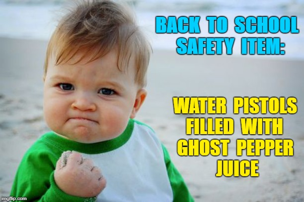 Don't MESS with KIDS!!! | BACK  TO  SCHOOL SAFETY  ITEM: WATER  PISTOLS FILLED  WITH      GHOST  PEPPER  JUICE | image tagged in memes,success kid original,rick75230,school shootings | made w/ Imgflip meme maker