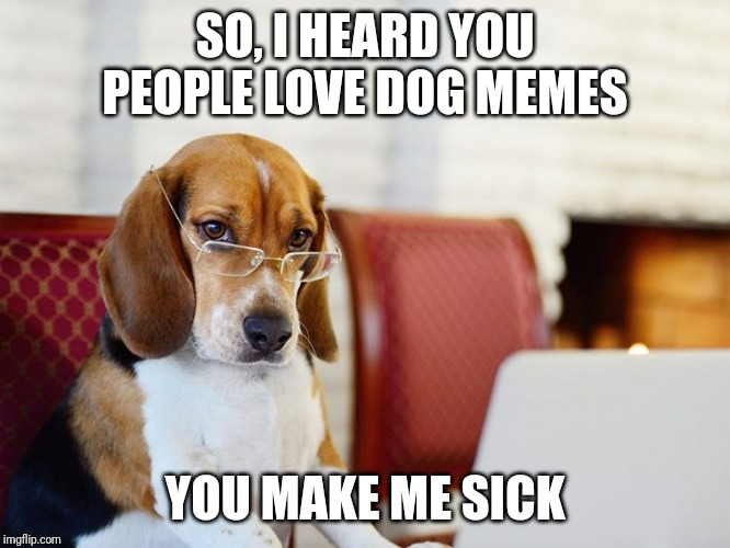 Severe judge Beagle Bagel. | SO, I HEARD YOU PEOPLE LOVE DOG MEMES YOU MAKE ME SICK | image tagged in smart beagle | made w/ Imgflip meme maker