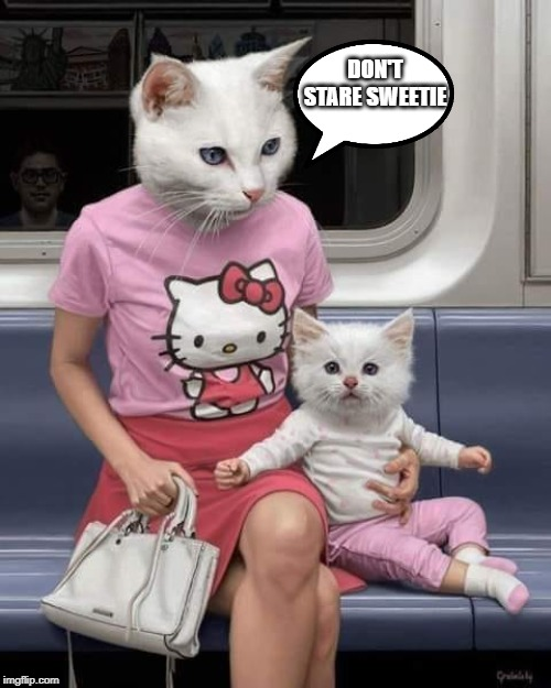 Saw some strange...on the subway this morning |  DON'T STARE SWEETIE | image tagged in funny,funny memes,hello kitty | made w/ Imgflip meme maker