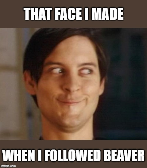 I lost conTROLL of myself | THAT FACE I MADE WHEN I FOLLOWED BEAVER | image tagged in memes,spiderman peter parker,beaver,lol,follow,imgflip | made w/ Imgflip meme maker