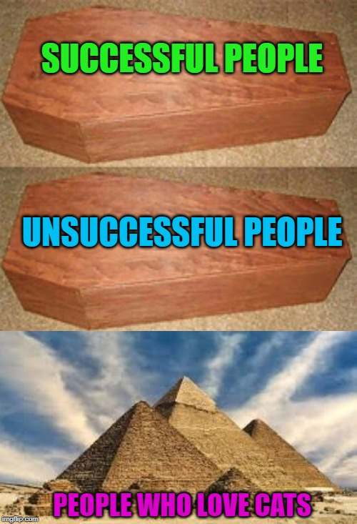 Who needs all that space? |  SUCCESSFUL PEOPLE; UNSUCCESSFUL PEOPLE; PEOPLE WHO LOVE CATS | image tagged in golden coffin meme,memes,egyptians,funny,cats,bastet | made w/ Imgflip meme maker