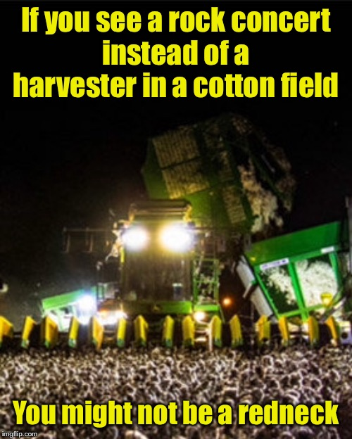 Rock On! | If you see a rock concert instead of a harvester in a cotton field You might not be a redneck | image tagged in memes,rock concert,you might be a redneck if | made w/ Imgflip meme maker