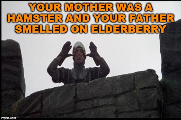 French Taunting in Monty Python's Holy Grail | YOUR MOTHER WAS A HAMSTER AND YOUR FATHER SMELLED ON ELDERBERRY | image tagged in french taunting in monty python's holy grail | made w/ Imgflip meme maker
