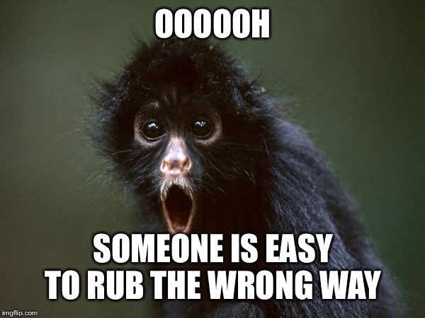 ooooh | OOOOOH SOMEONE IS EASY TO RUB THE WRONG WAY | image tagged in ooooh | made w/ Imgflip meme maker