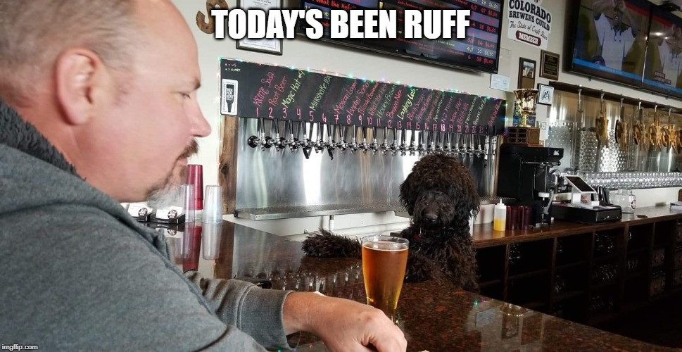 TODAY'S BEEN RUFF | image tagged in funny memes | made w/ Imgflip meme maker