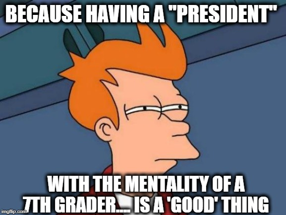 "Futurama Fry Meme | BECAUSE HAVING A ""PRESIDENT"" WITH THE MENTALITY OF A 7TH GRADER.... IS A 'GOOD' THING 