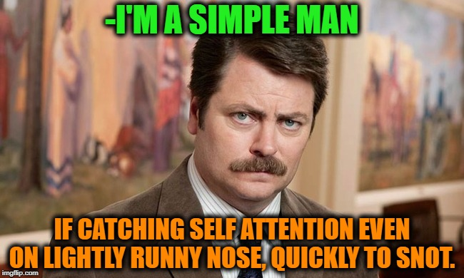 -Ones of most useful templates now on public care. | -I'M A SIMPLE MAN IF CATCHING SELF ATTENTION EVEN ON LIGHTLY RUNNY NOSE, QUICKLY TO SNOT. | image tagged in i'm a simple man,ron swanson,what if,nose,first world problems,the cure | made w/ Imgflip meme maker