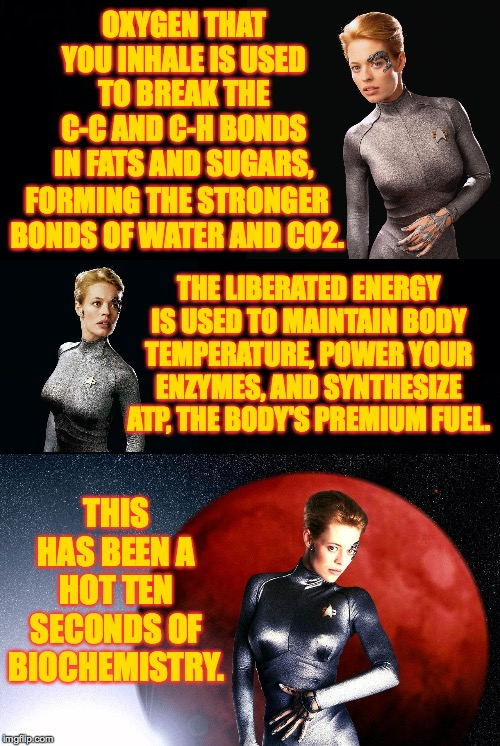 A hot ten seconds of biochemistry. | OXYGEN THAT YOU INHALE IS USED TO BREAK THE C-C AND C-H BONDS IN FATS AND SUGARS, THIS HAS BEEN A HOT TEN SECONDS OF BIOCHEMISTRY. FORMING T | image tagged in memes,seven of nine,jeri ryan,star trek,chemistry,biochemistry | made w/ Imgflip meme maker