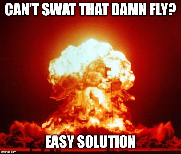 Great alternative to using nukes in warfare. | CAN'T SWAT THAT DAMN FLY? EASY SOLUTION | image tagged in nuke,flies | made w/ Imgflip meme maker