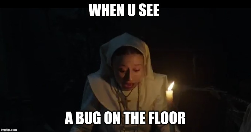 WHEN U SEE A BUG ON THE FLOOR | image tagged in when you see it,bugs | made w/ Imgflip meme maker