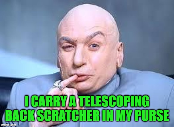 dr evil pinky | I CARRY A TELESCOPING BACK SCRATCHER IN MY PURSE | image tagged in dr evil pinky | made w/ Imgflip meme maker