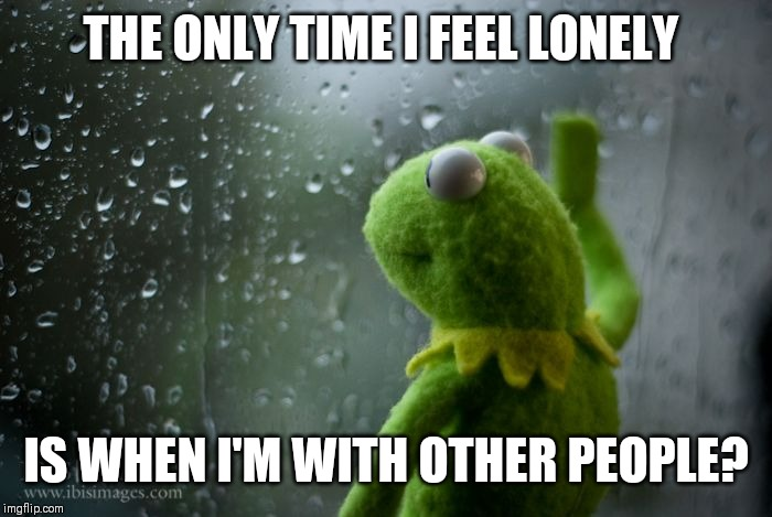 Makes you realise all the ways you don't fit in. |  THE ONLY TIME I FEEL LONELY; IS WHEN I'M WITH OTHER PEOPLE? | image tagged in avoid white sheep | made w/ Imgflip meme maker