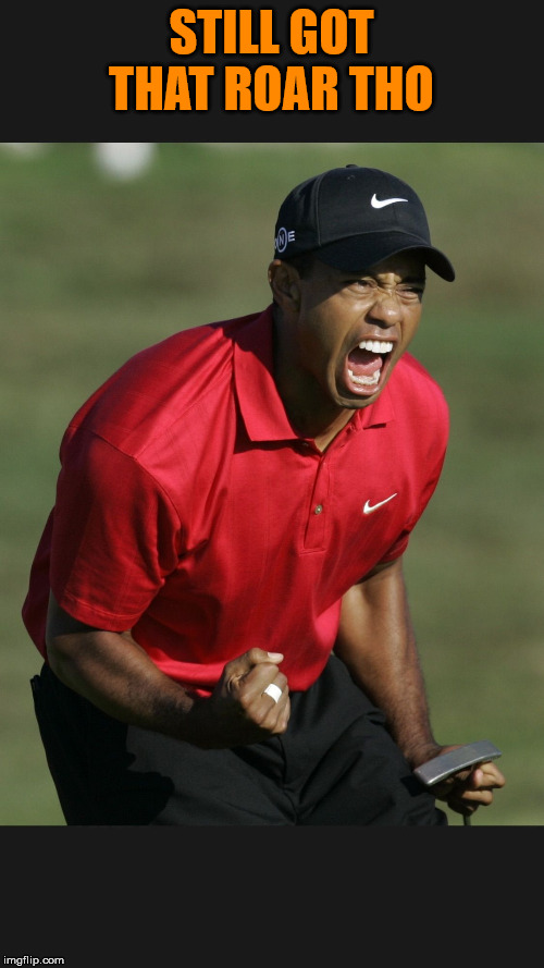 Tiger Woods | STILL GOT THAT ROAR THO | image tagged in tiger woods | made w/ Imgflip meme maker