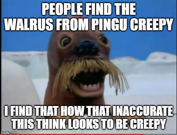 This dude looks more like a Sea Lion than a Walrus | PEOPLE FIND THE WALRUS FROM PINGU CREEPY I FIND THAT HOW THAT INACCURATE THIS THINK LOOKS TO BE CREEPY | image tagged in pingu,walrus,pingu walrus,inaccurate,memes,sea lion | made w/ Imgflip meme maker