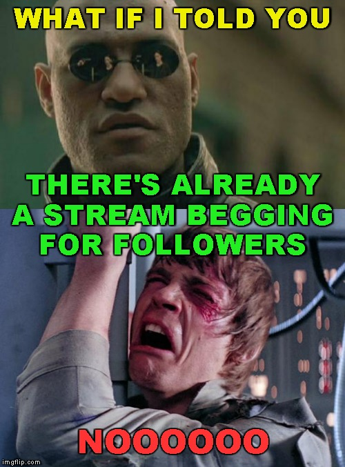 WHAT IF I TOLD YOU NOOOOOO THERE'S ALREADY A STREAM BEGGING FOR FOLLOWERS | image tagged in memes,matrix morpheus,luke nooooo | made w/ Imgflip meme maker
