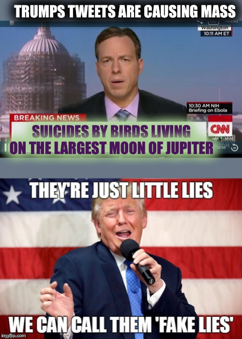 For All The Lamestream Fake News Media | TRUMPS TWEETS ARE CAUSING MASS SUICIDES BY BIRDS LIVING ON THE LARGEST MOON OF JUPITER | image tagged in cnn breaking news template,little,lies,trumped | made w/ Imgflip meme maker