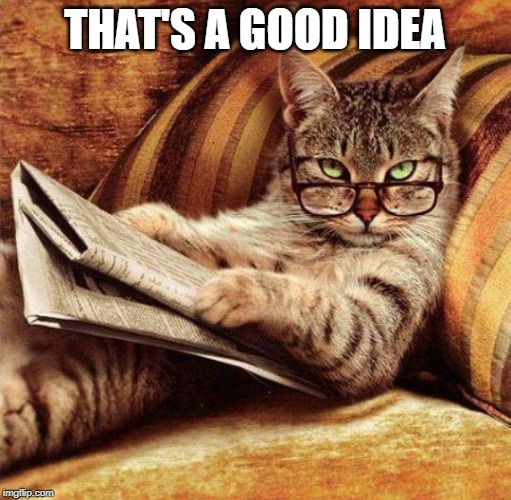 Smart Cat | THAT'S A GOOD IDEA | image tagged in smart cat | made w/ Imgflip meme maker