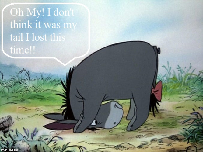 I Think I Lost My.......Nope It Wasn't My Tail! | image tagged in eeyore,tail,donkey,lost | made w/ Imgflip meme maker