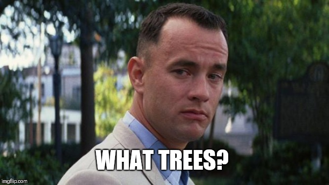 Forrest Gump | WHAT TREES? | image tagged in forrest gump | made w/ Imgflip meme maker