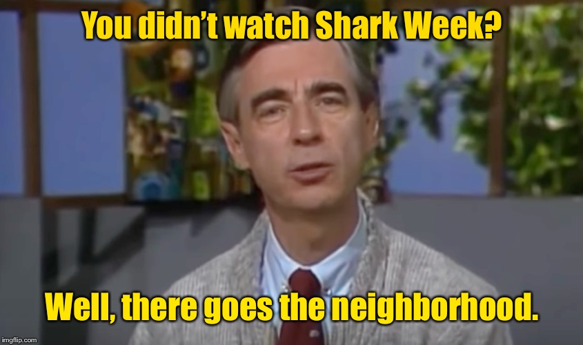 It's a wonderful day in the oceanhood | You didn't watch Shark Week? Well, there goes the neighborhood. | image tagged in shark week,mr rogers | made w/ Imgflip meme maker