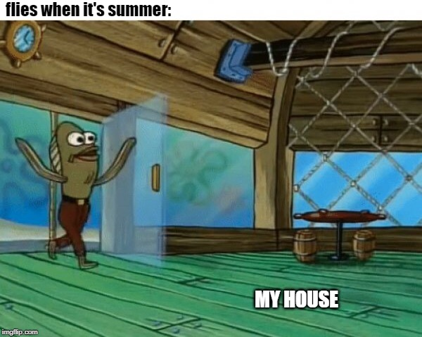 Spongebob fish |  flies when it's summer:; MY HOUSE | image tagged in spongebob fish | made w/ Imgflip meme maker