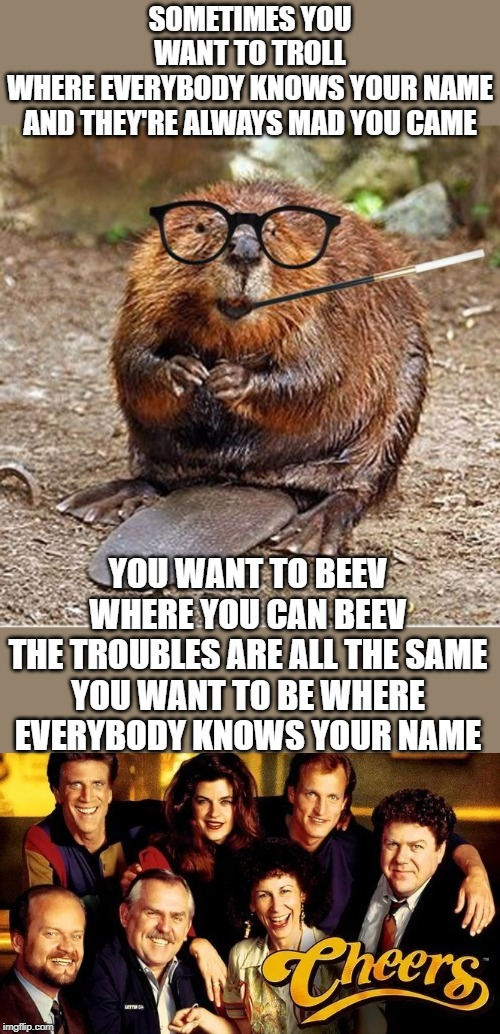 Ted Damson, Cheers!! | SOMETIMES YOU WANT TO TROLL WHERE EVERYBODY KNOWS YOUR NAME AND THEY'RE ALWAYS MAD YOU CAME YOU WANT TO BEEV WHERE YOU CAN BEEV THE TROUBLES | image tagged in pretentious beaver,cheers,leave it to beaver,imgflip trolls,fun,lolz | made w/ Imgflip meme maker