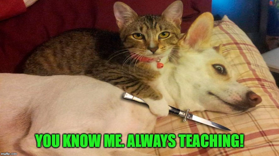 Hostage situation | YOU KNOW ME. ALWAYS TEACHING! | image tagged in hostage situation | made w/ Imgflip meme maker