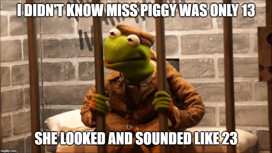 Kermit in jail |  I DIDN'T KNOW MISS PIGGY WAS ONLY 13; SHE LOOKED AND SOUNDED LIKE 23 | image tagged in kermit in jail | made w/ Imgflip meme maker