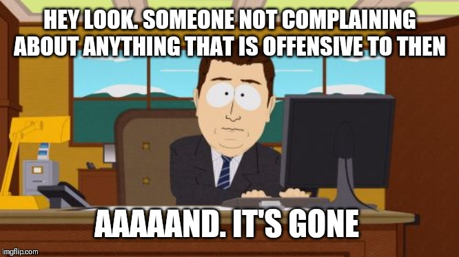 Aaaaand Its Gone | HEY LOOK. SOMEONE NOT COMPLAINING ABOUT ANYTHING THAT IS OFFENSIVE TO THEN AAAAAND. IT'S GONE | image tagged in memes,aaaaand its gone | made w/ Imgflip meme maker