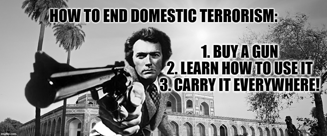 Eastwood rules | HOW TO END DOMESTIC TERRORISM: 1. BUY A GUN 2. LEARN HOW TO USE IT 3. CARRY IT EVERYWHERE! | image tagged in clint eastwood,gun control | made w/ Imgflip meme maker