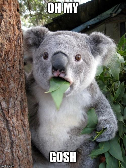 Surprised Koala Meme | OH MY GOSH | image tagged in memes,surprised koala | made w/ Imgflip meme maker
