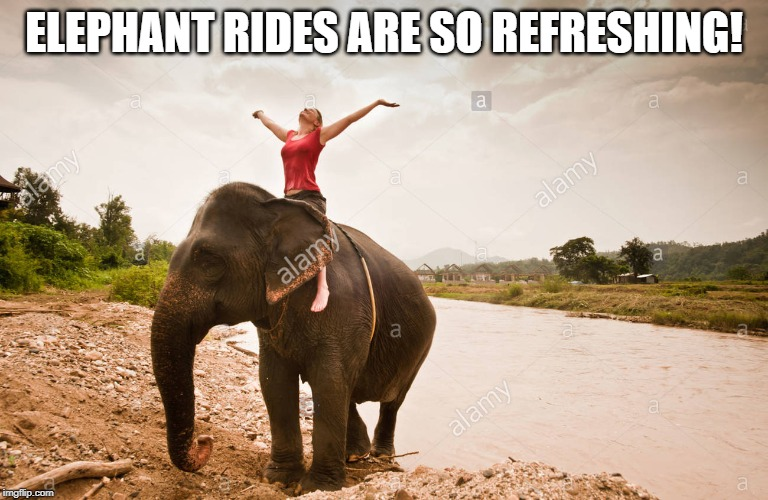 ELEPHANT RIDES ARE SO REFRESHING! | made w/ Imgflip meme maker