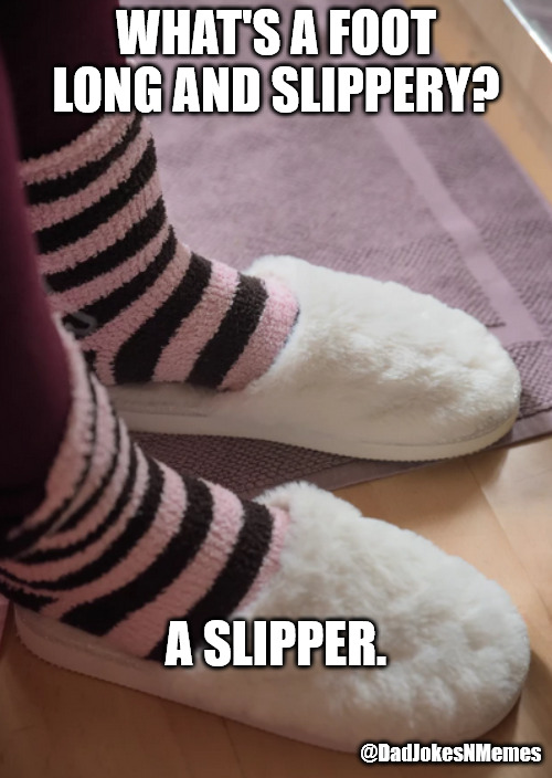 Red Forman would love this joke. | WHAT'S A FOOT LONG AND SLIPPERY? A SLIPPER. @DadJokesNMemes | image tagged in dad joke | made w/ Imgflip meme maker