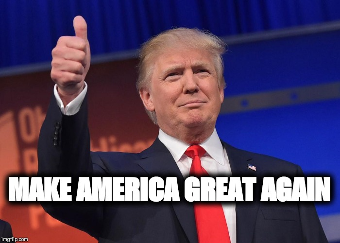 donald trump | MAKE AMERICA GREAT AGAIN | image tagged in donald trump | made w/ Imgflip meme maker